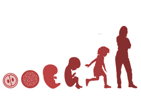 La falsa izquierda: a favor del aborto, en contra de los  empobrecidos