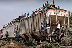 tren la bestia