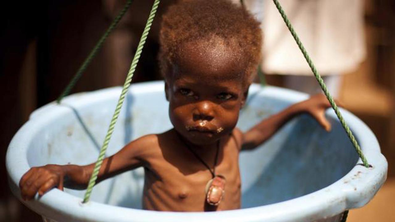 El año de las cuatro hambrunas