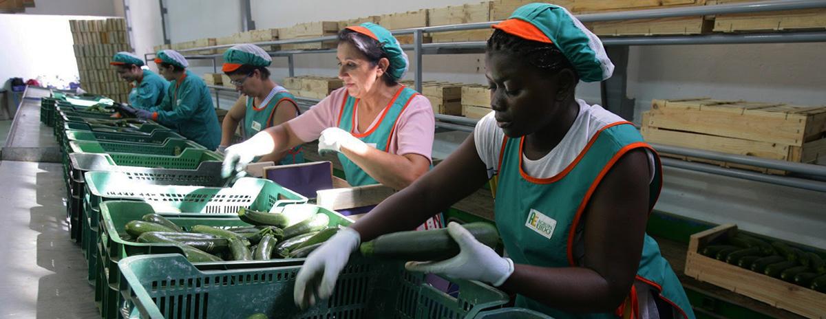 La migración, una pieza clave para las cadenas de suministro global