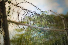 Humanizar las fronteras